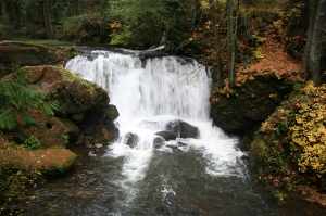 Upper_Whatcom_Falls-110506
